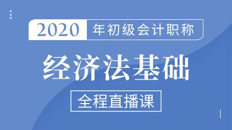 2020年初级经济法精讲班第十讲