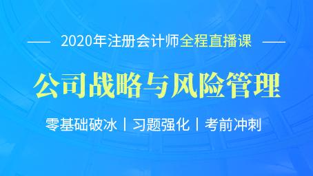 2020年注会战略习题强化班第四讲