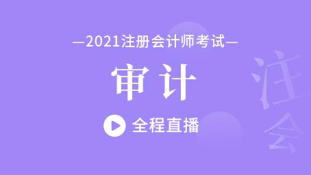 2021年注会审计习题强化班第六讲